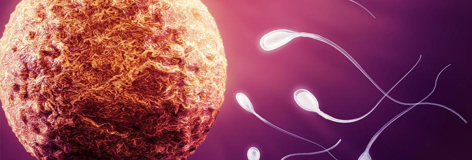 Erkek İnfertilitesi || Medicana Konya Tüp Bebek Merkezi̇